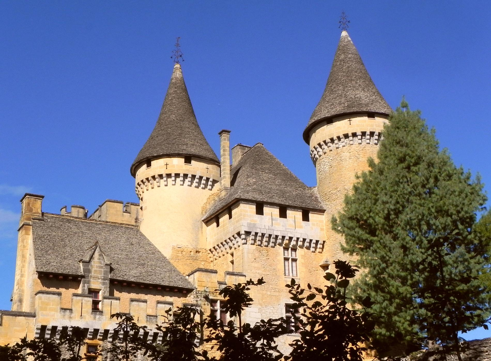 france-just-for-you-dordogne-puymartin-castle
