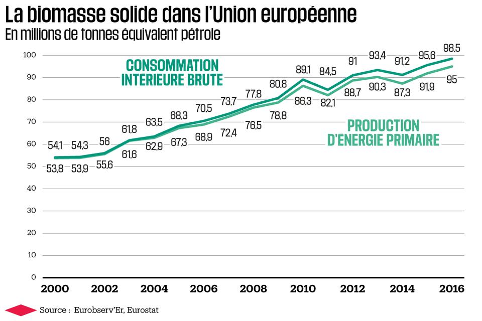 Biomasse : un substitut au charbon plébiscité en Europe