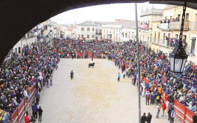 El tripartito sigue sin conseguir que el Carnaval del Toro sea Fiesta Internacional
