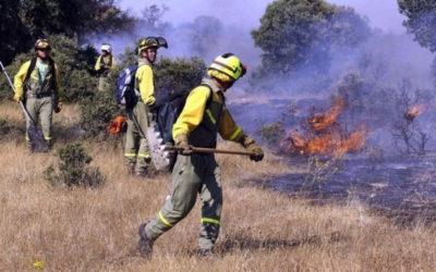La Diputación recibe 420.000 euros para contratar trabajadores de prevención de incendios
